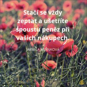 svetr_Jarmila_Mllýnková
